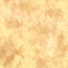 Тканевый фон Lastolite Ezycare 3 x 3.5m Arizona