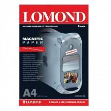 Бумага Lomond Magnetic Matte А4 660г/м2 2 листа (2020346)
