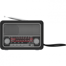Радиоприёмник Ritmix RPR-035 серебро